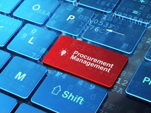 The 4 P's of procurement (aside from pricing)
