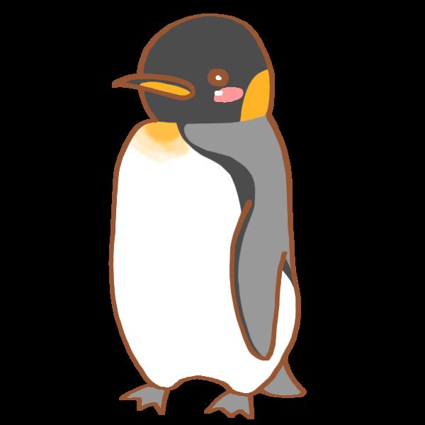 キングペンギンのイラスト かわいいフリー素材が無料のイラストレイン