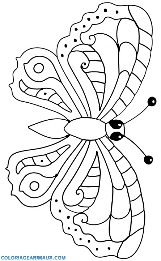 Coloriage Papillon Qui Vole à Imprimer