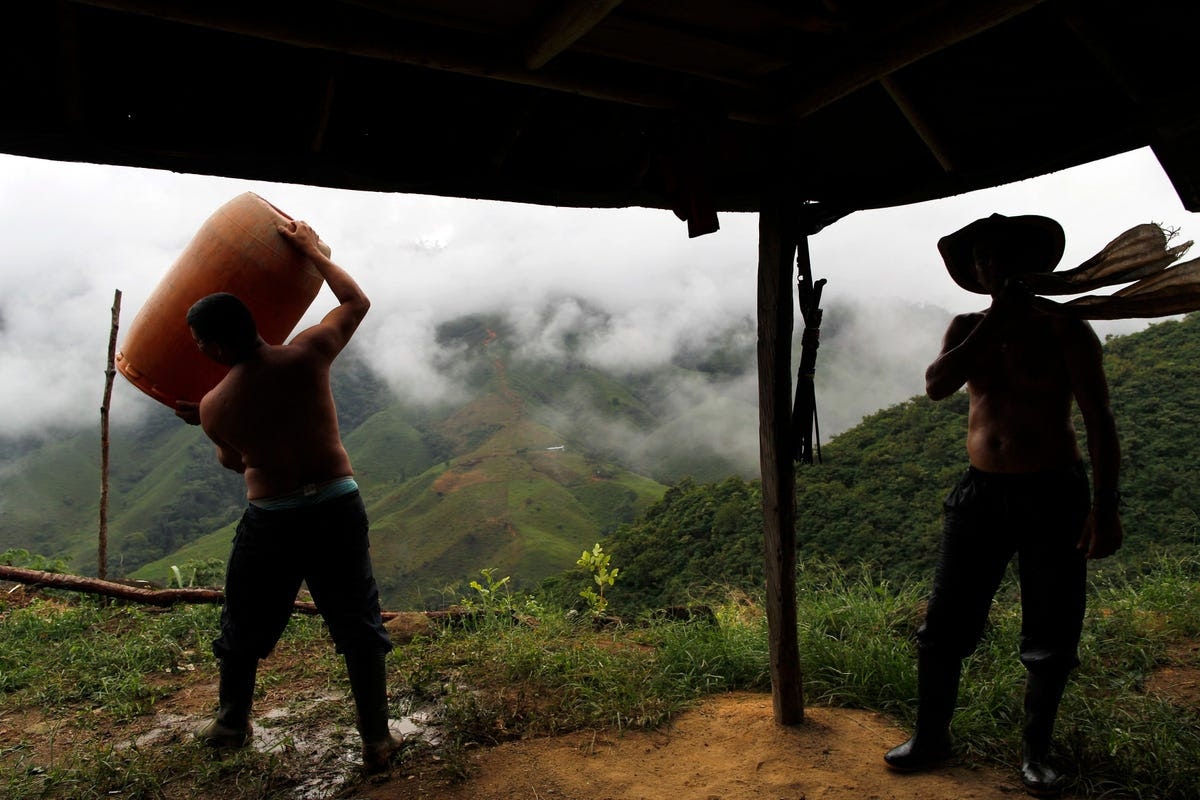 As negotiations with the FARC have progressed, the Colombian government has turned its focus to groups like Los Urabeños. The group has sustained losses, including the dismantling of a trafficking network shipping cocaine to Europe. But, Insight Crime notes, the group's top leadership has avoided capture.