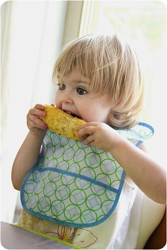 Firt corn cob web.jpg