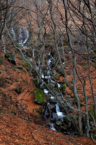 Waterfalls of Aigoual