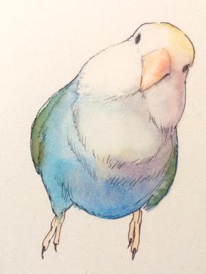 小鳥の描き方 その2 ことりのアトリエアートユニット永久保存