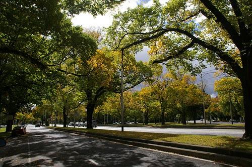 Autumn in Melbourne