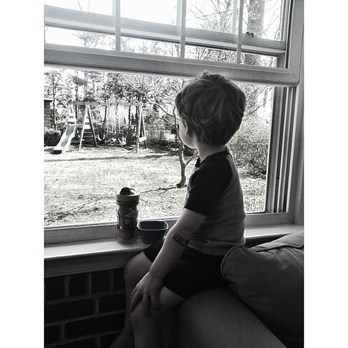 Watching the squirrels...