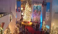 Grand Tree at the Museum of Science and Industry in Chicago. (Photo courtesy of Janoa Taylor.)