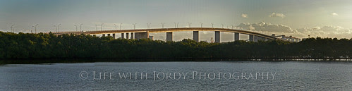 Stockton Bridge from the Fern Bay Wetlands by Life with Jordy