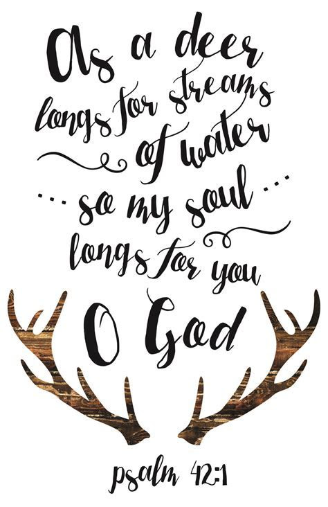 Best 25  Deer quotes ideas on Pinterest   Psalm 42, Funny
