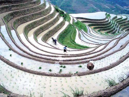hagiang3