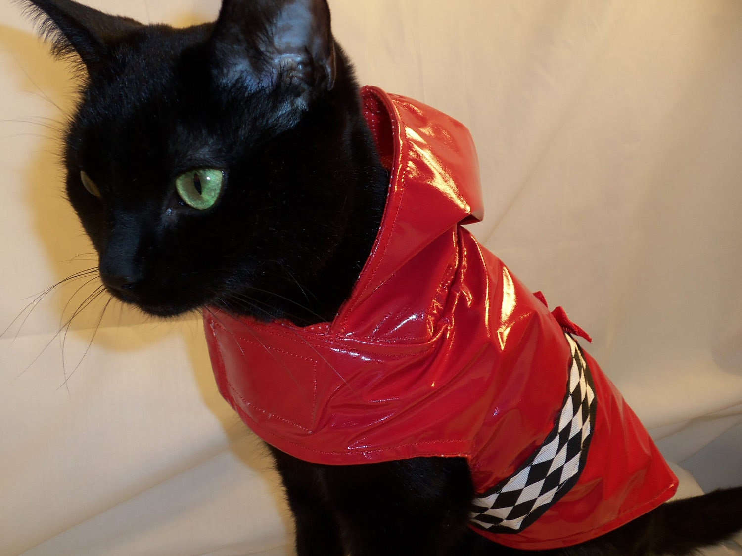 RockinDogs Red Patent Hooded Raincoat for Cats Sizes Sizes L, XL, XXL