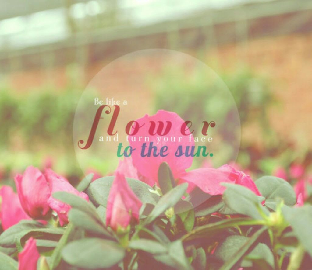 top flower quotes about life tumblr lifecoolquotes