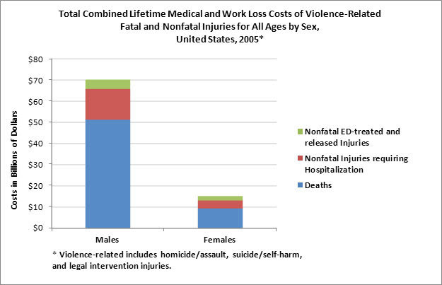 Total Combined Lifetime Medical and Work Loss Costs of Violence-Related Fatal and Nonfatal Injuries for all ages by sex, United States, 2005