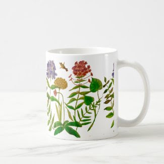 Botanical Illustration on Coffee/Tea Mug