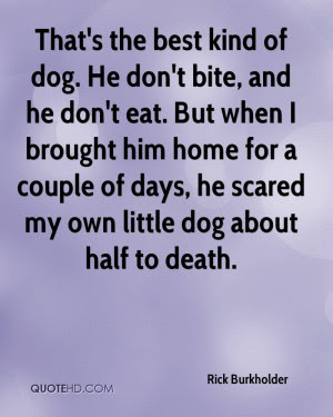 Death Quotes About Dogs. QuotesGram