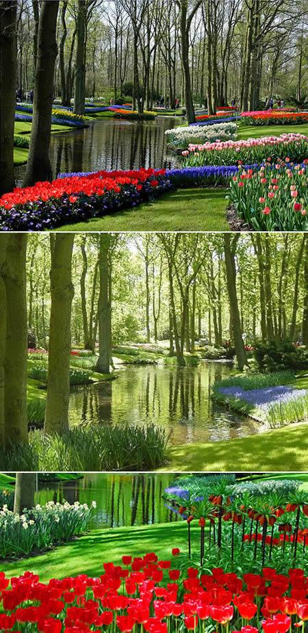 Most Beautiful Flower Garden In The World Hd