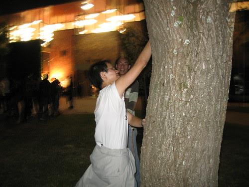 alan on tree
