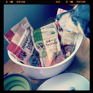 Working on a #dogtreat #review and #Giveaway for the blog, stay tuned! @rachaelrayshow #RachaelRay #Nutrish #dogstagram #adoptdontshop #rescue