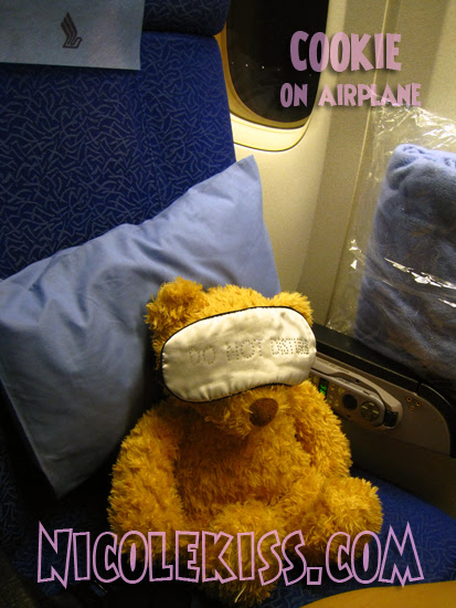 cookie on airplane