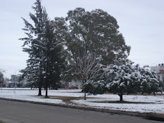 The day it snowed in La Plata
