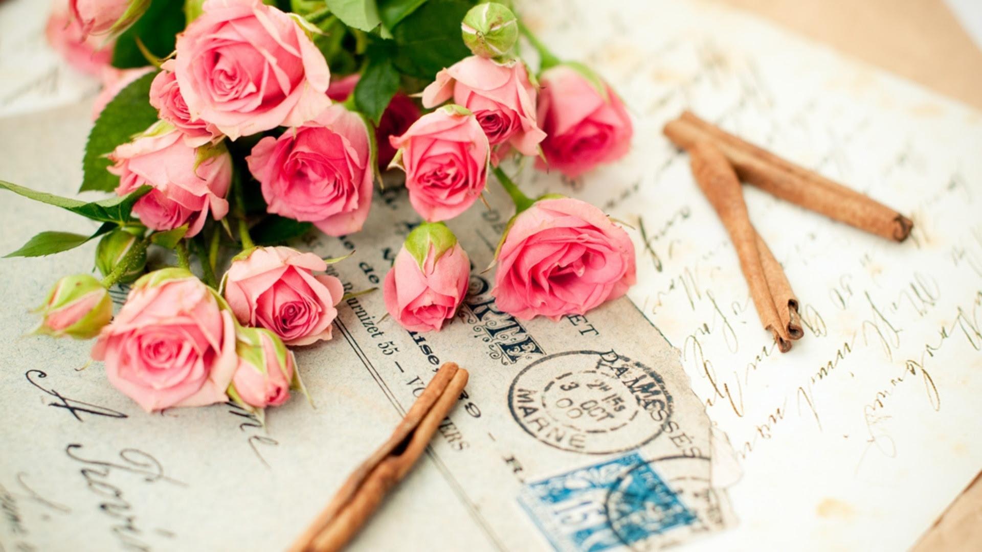 鮮やかな色 美しい花 Pc壁紙 オトナ女子向け オシャレな