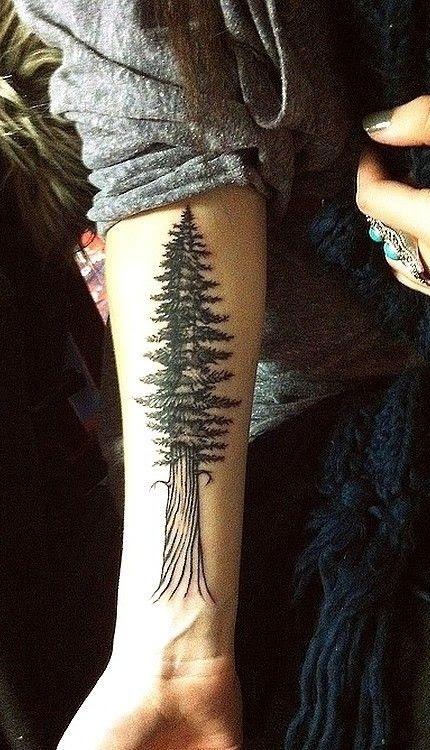 Tattoo Trends Riveting Redwood Tree Tattoo Flower Tattoos Design