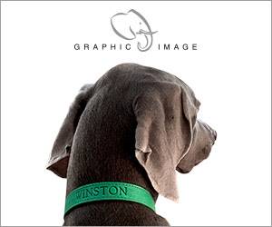 Graphic Image Pet Collars