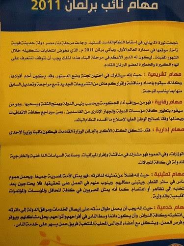 Fj Party flyer elections 2011
