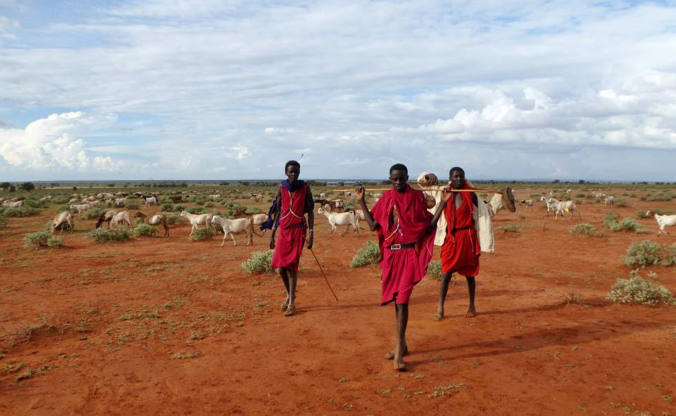 Hombres masai en Laikipia, Kenia.