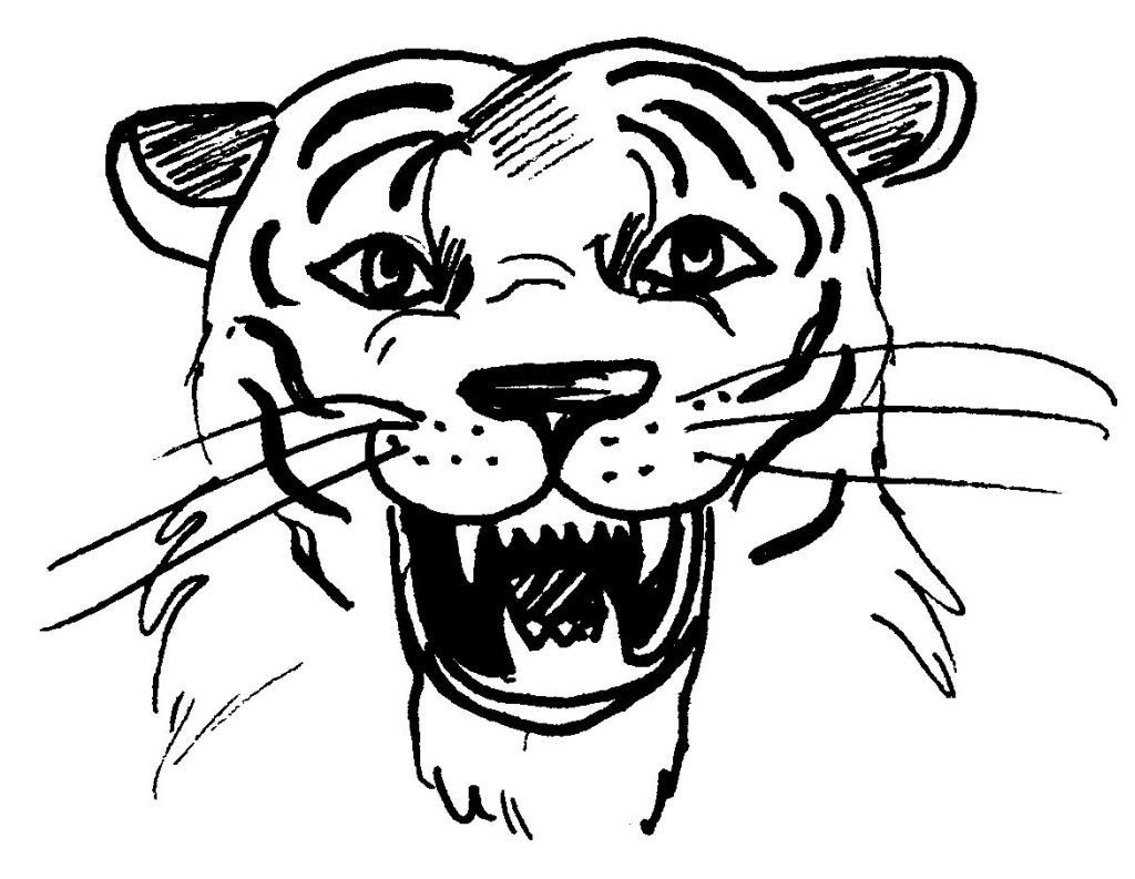 Dessin coloriage animal tigre tete
