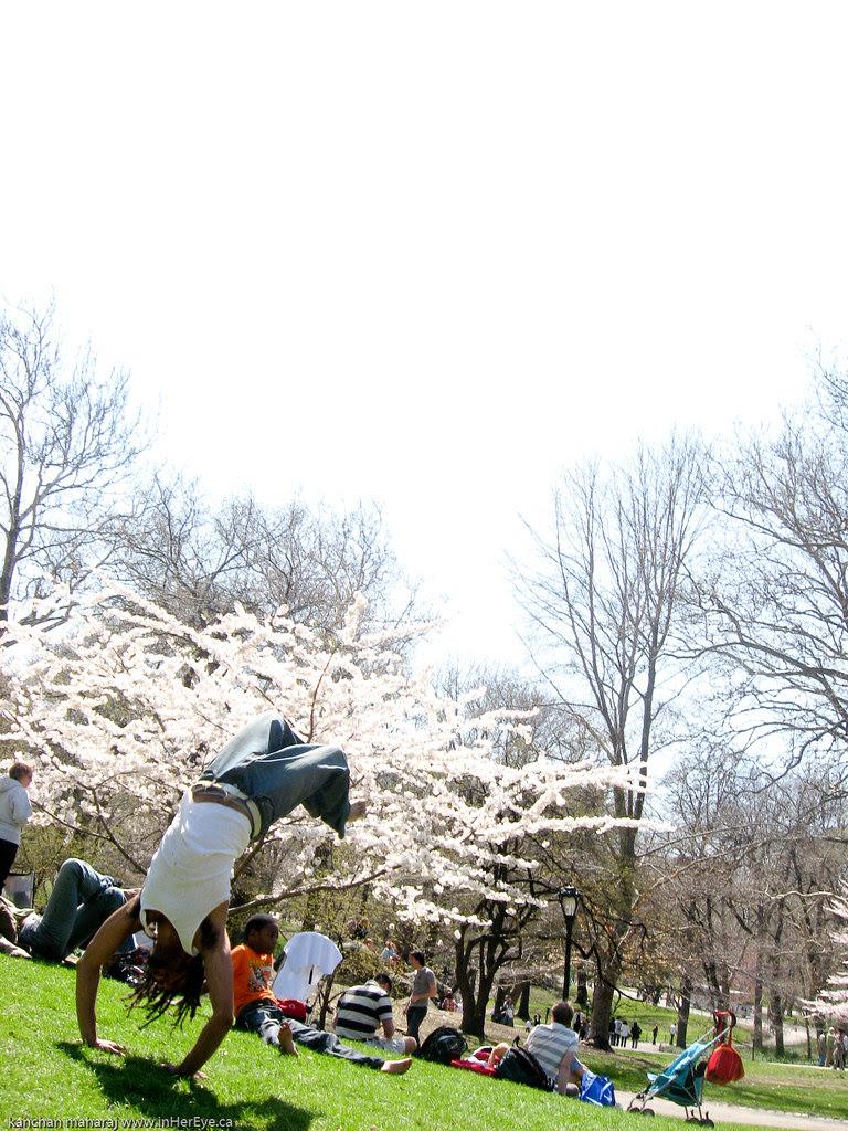 NewYork2010 - Back flips in Central Park
