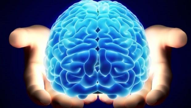 ringiovanire il cervello