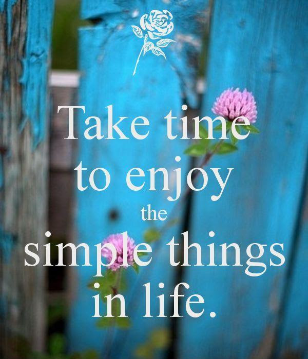 Take Time To Enjoy The Simple Things In Life Picture Quotes