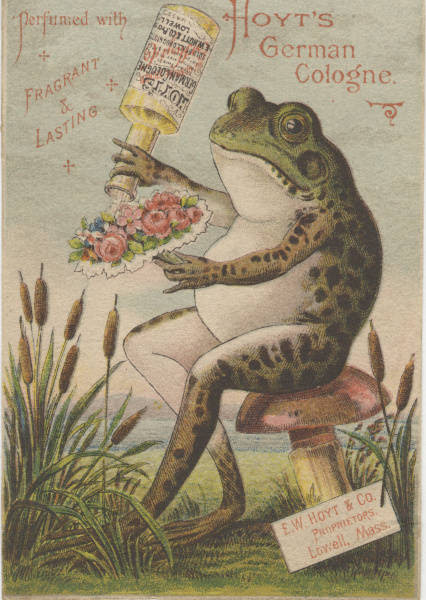 frog pouring perfume on posey of flowers