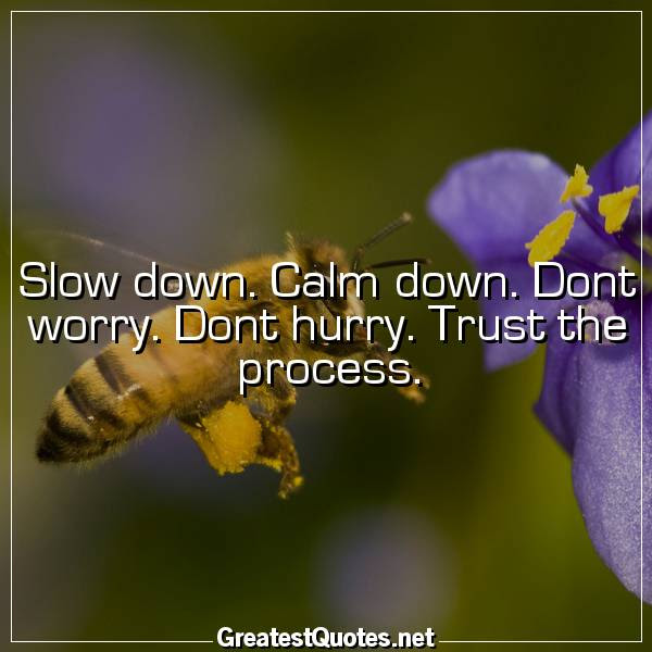 Slow Down Calm Down Dont Worry Dont Hurry Trust The Process