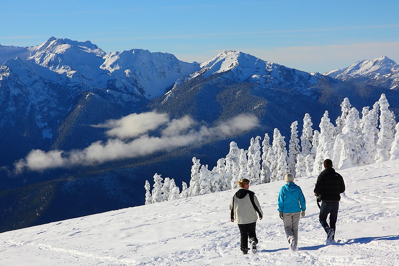 IMG_9194 Hurricane Ridge in Winter