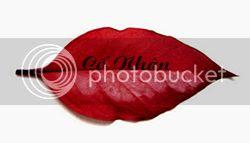 http://i1280.photobucket.com/albums/a486/C_L_L/CN_zps058ec609.jpg