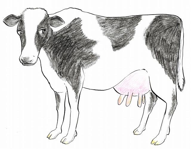 イラストランド 乳牛