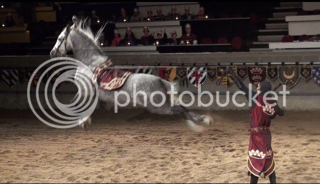 photo Horse_zpscd691e02.jpg