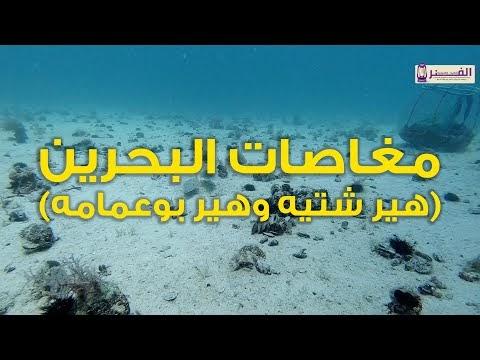 مغاصات البحرين هير شتيه وهير بوعمامه