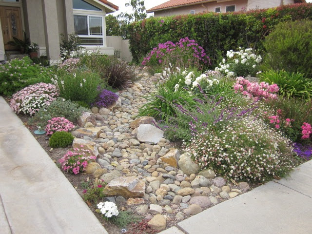 Front Yard Without Grass - Native Home Garden Design