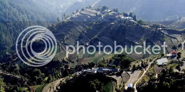 Theog Near Shimla