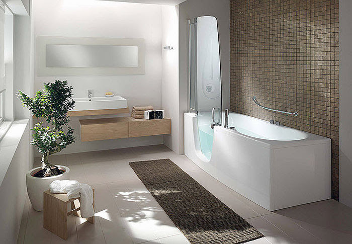 Teuco Walk In Bathtub and ShowerUniversal Design Style