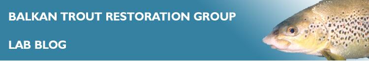 Balkan Trout Restoration Group Blog