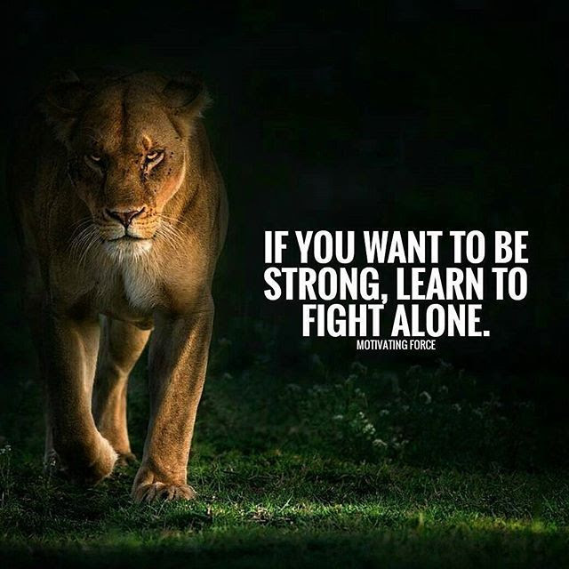 If You Want To Be Strong Learn To Fight Alone Pictures Photos And