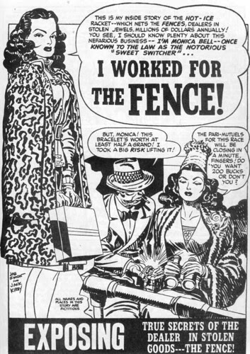 The fence 1_WEB