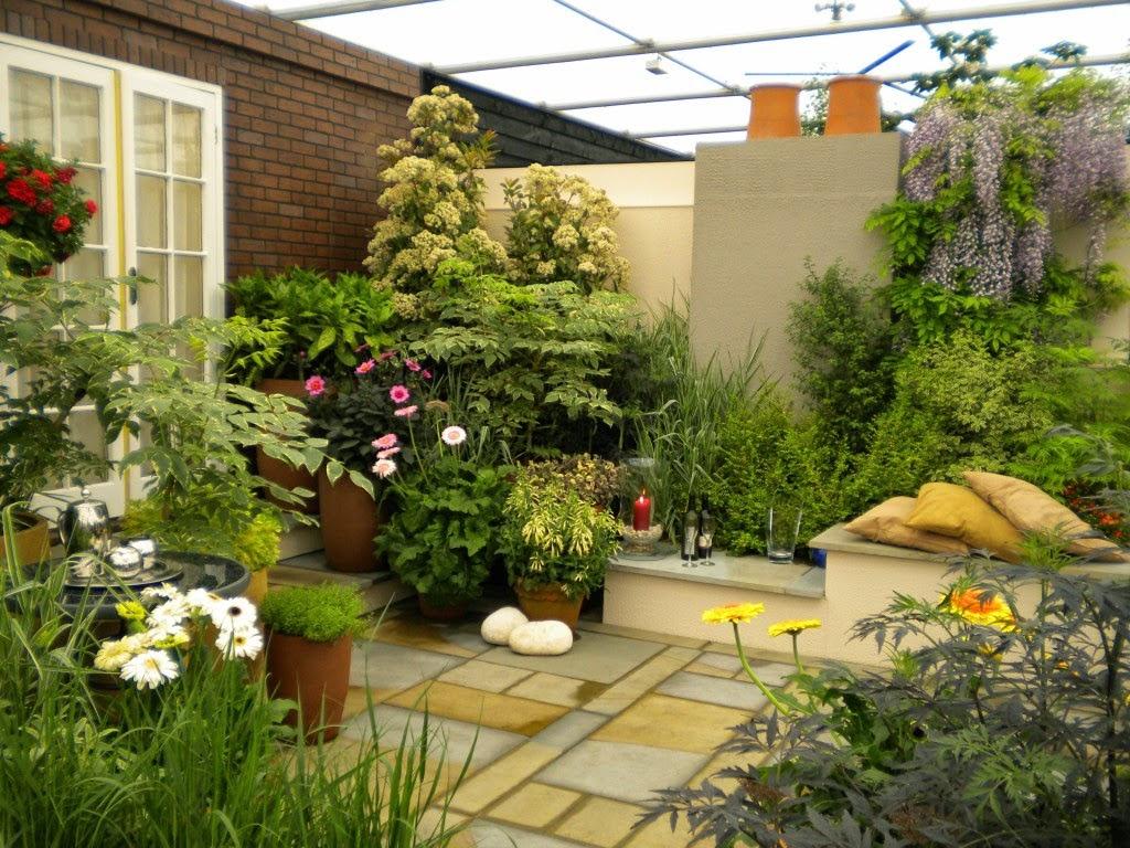 Pilihan Konsep Taman Indoor Rumah Minimalis Tropis Nan Harmonis