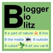 Blogger BioBlitz mini logo