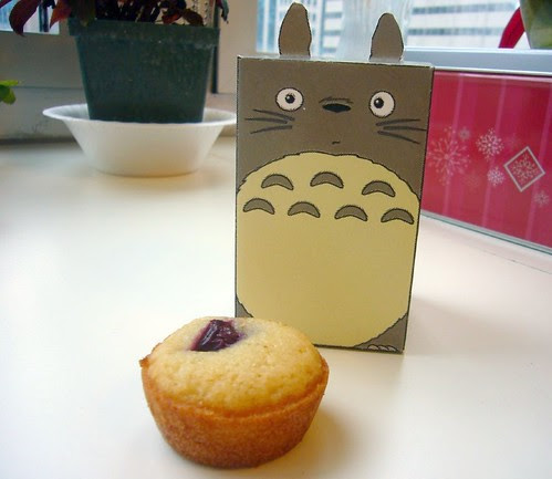 Cubee Totoro and his Cherry Friand