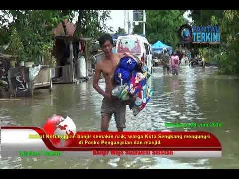 VIDEO:Banjir Wajo Meluas,  Pengungsi  makin bertambah Dan Membutuhkan Bantuan