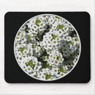 White Alyssum mousepad